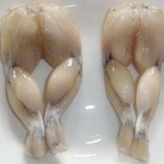 imagen Ancas de rana